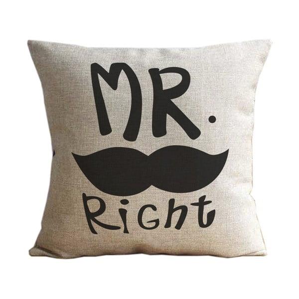 Povlak na polštář Mr. Moustache, 45x45 cm