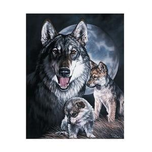 Plechová cedule Wolf