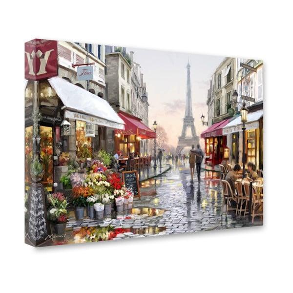 Obraz Styler Canvas Watercolor Paris I, 60x80 cm