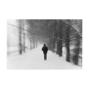 Fotoobraz Člověk v aleji, 90x60 cm