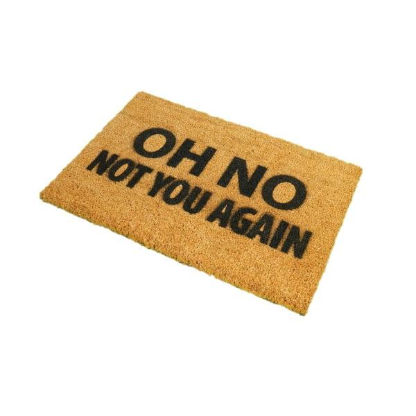 Rohožka Artsy Doormats Not You Again,40x60cm