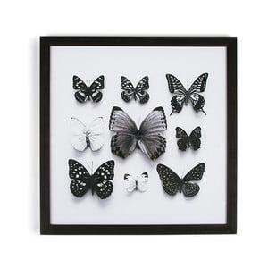 Tablou cu ramă Graham & Brown Butterfly Studies, 50 x 50 cm