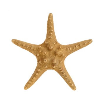 Decorațiune în formă de stea InArt Sea, ⌀ 25 cm, auriu de la InArt