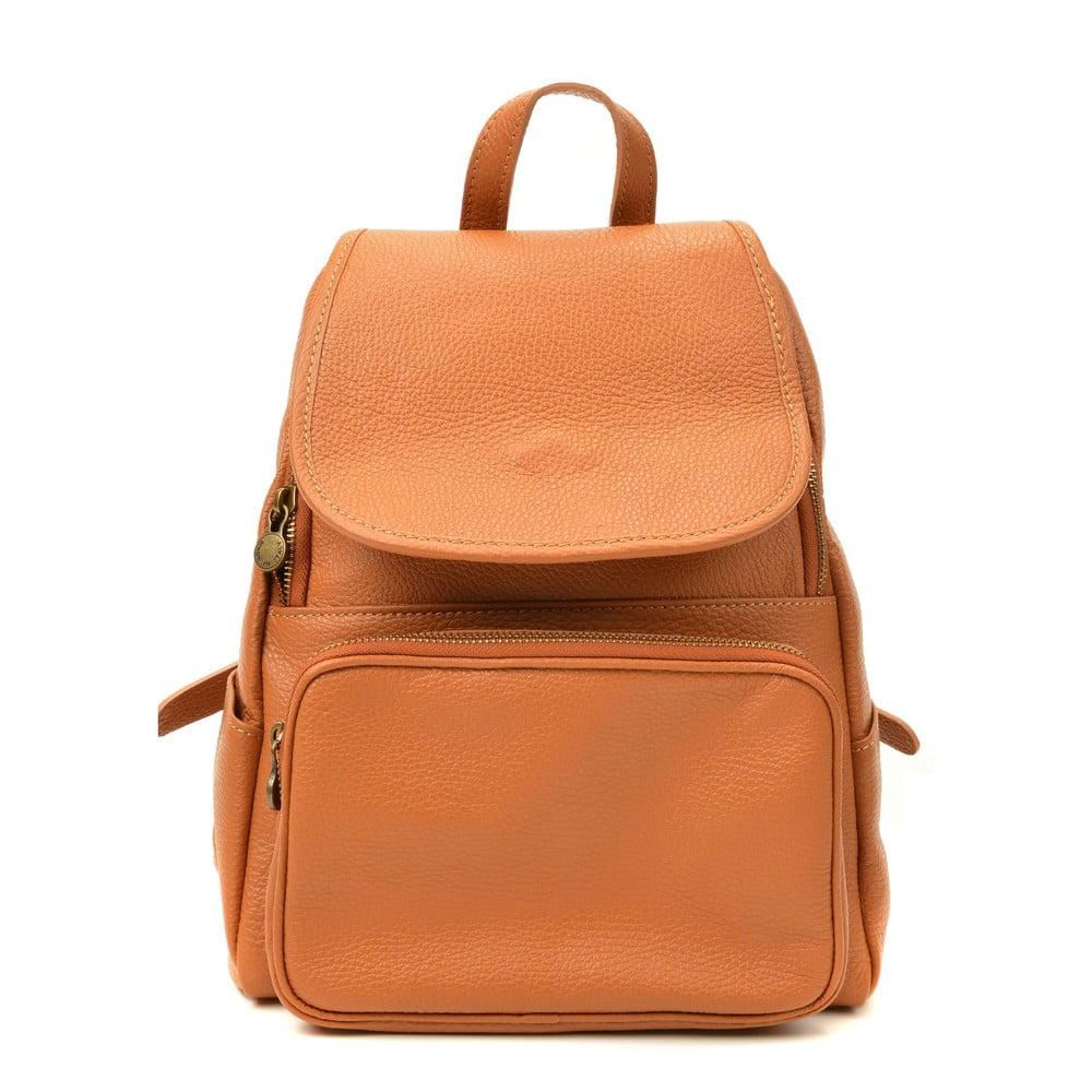 Hnědý kožený batoh Luisa Vannini Sienna
