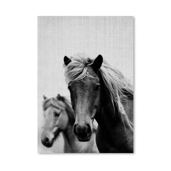 Plakát Wild Horses
