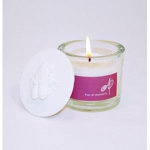 Aromatická svíčka THD Fragnances, mandlový květ