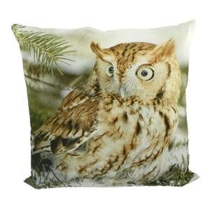 Polštář Owl 50x50 cm