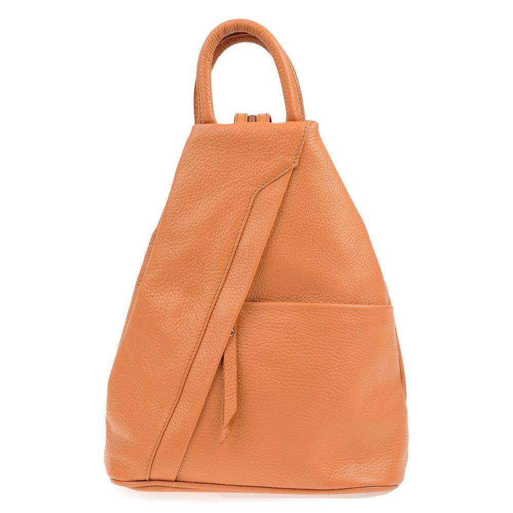 Hnědý kožený batoh Carla Ferreri Emilia