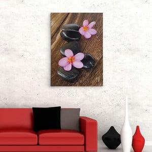 Obraz na plátně Dřevěná podlaha, 50x70 cm