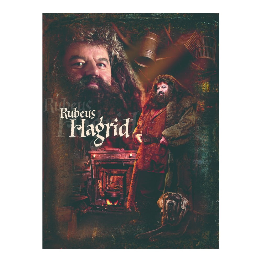 Obraz Pyramid International Harry Potter Hagrid, 30 x 40 cm