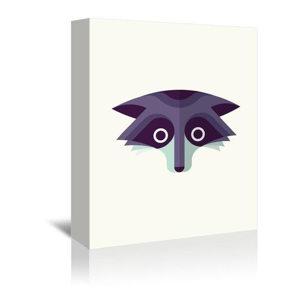 Obraz na plátně Raccoon od Christiana Jacksona