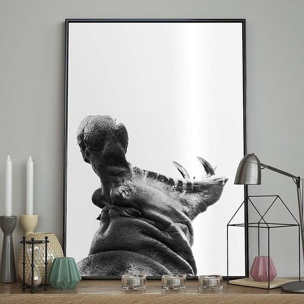 Poster DecoKing Hippopotamus, 70 x 50 cm