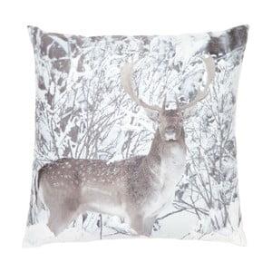 Polštář Deer, 45x45 cm