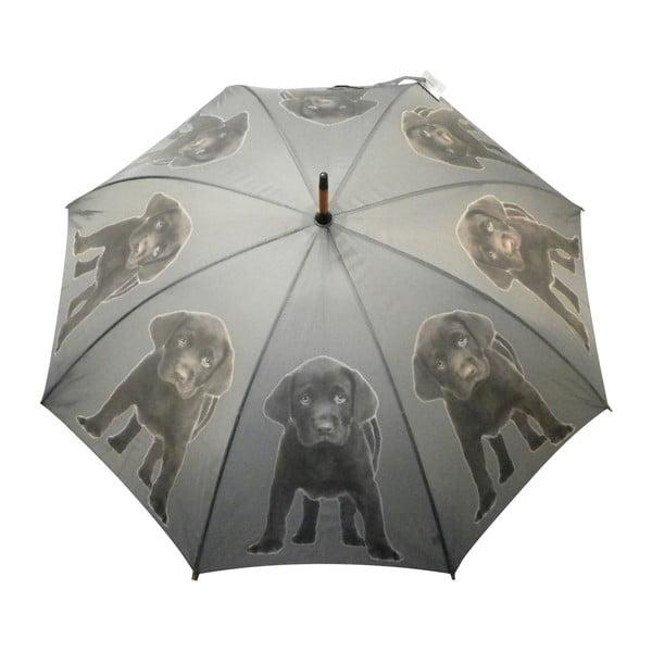 Deštník Mars&More Labrador Chocolate