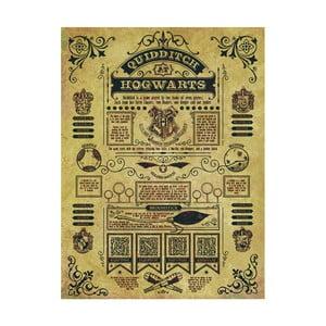 Obraz Pyramid International Harry Potter Quidditch At Hogwarts, 60 x 80 cm
