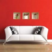 3D samolepky na zeď Nisha Roses, 3 ks