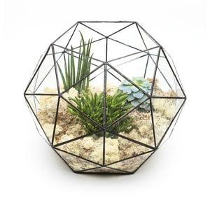 Terárium s rostlinami Urban Botanist Super Aztec Hexagon, tmavý rám