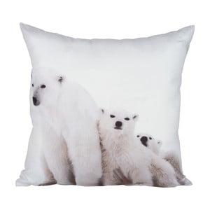 Polštář Bear White, 45x45 cm