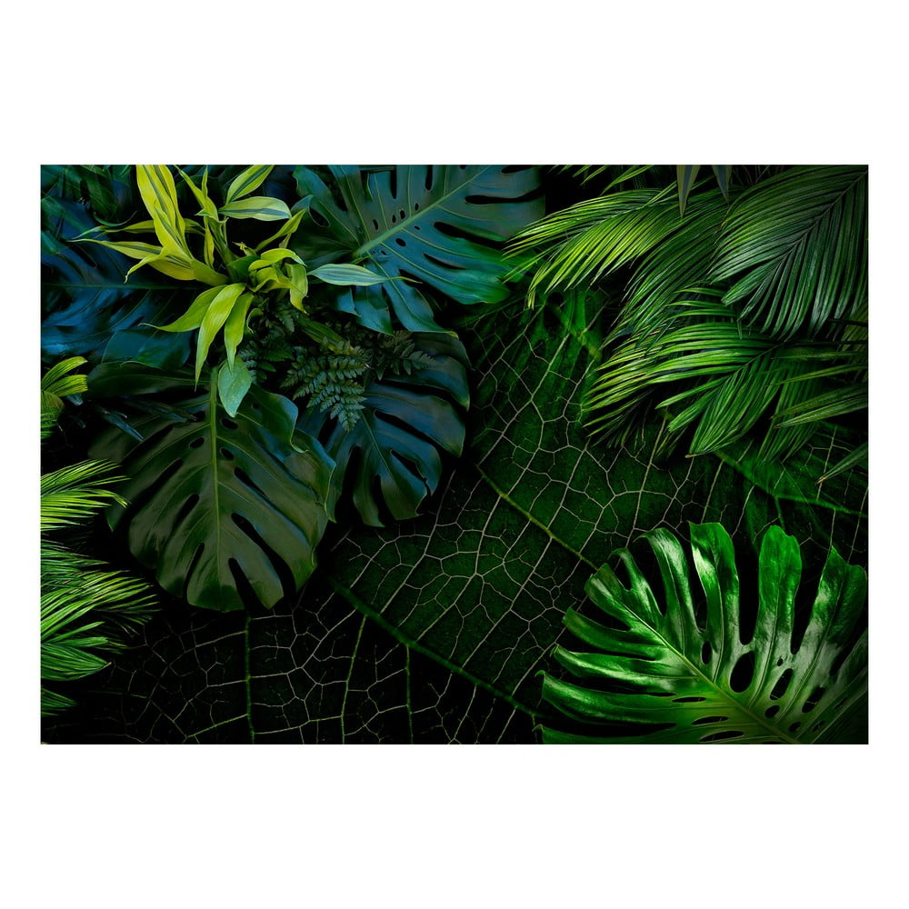 Velkoformátová tapeta Bimago Dark Jungle 400 x 280 cm