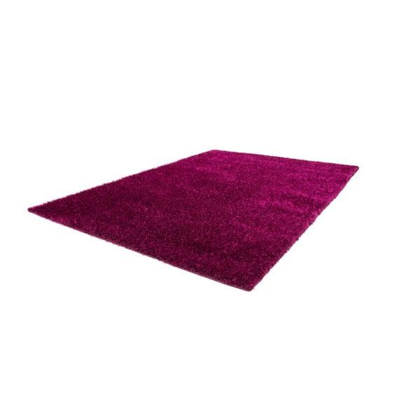 Koberec Harmonie 910 Violet, 140x200 cm