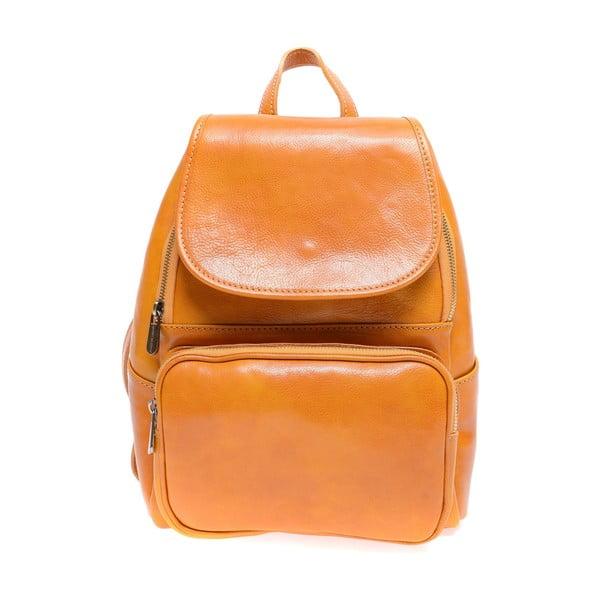 Koňakově hnědý kožený batoh Roberta M Francesca