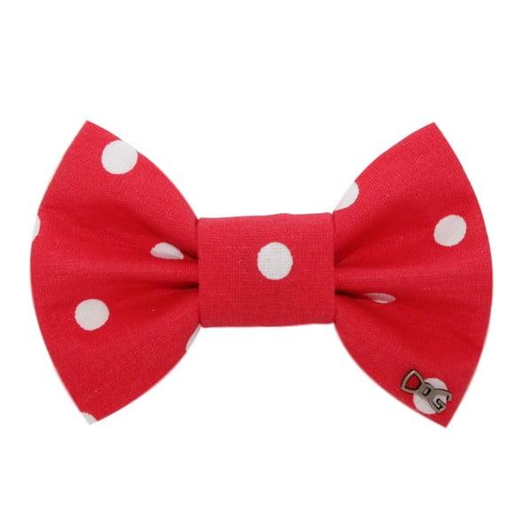 Červený charitativní psí motýlek s velkými puntíky Funky Dog Bow Ties, vel. L