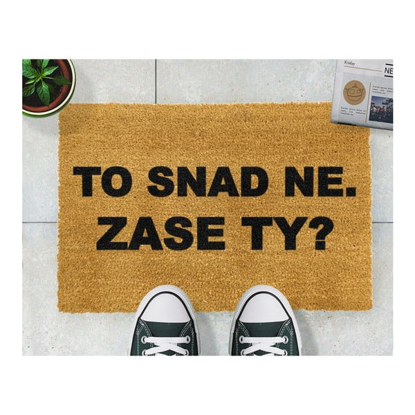 Rohožka z prírodného kokosového vlákna Artsy Doormats Zase ty?, 40×60 cm