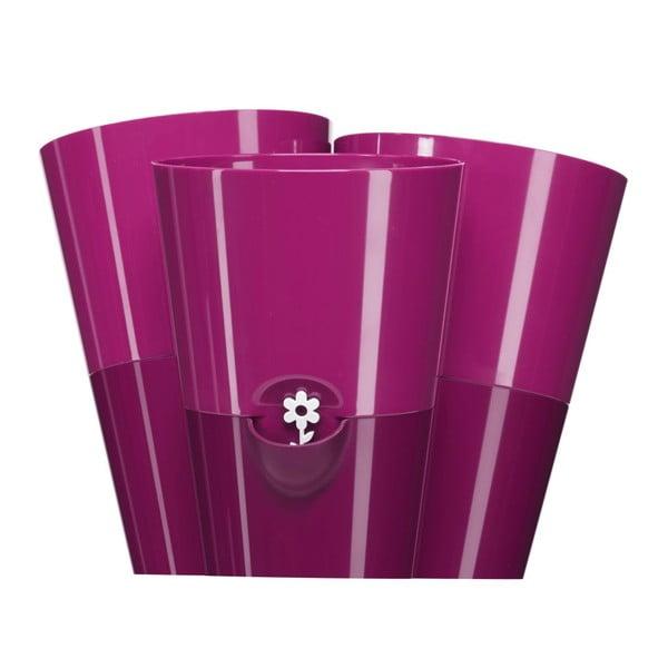 Květináč Fresh Herbs Trio Pink