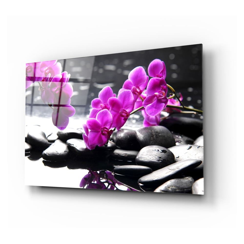 Skleněný obraz Insigne Orchid