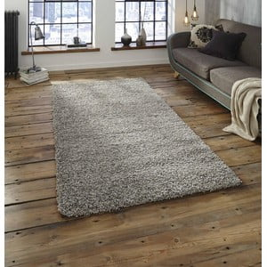 Koberec ve stříbrné barvě Think Rugs Loft, 120x170 cm