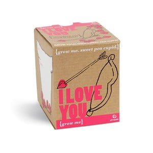 Pěstitelský set semínky sladkého hrachu Gift Republic I Love You