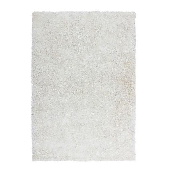 Šedý koberec Kayoom Flash! 500, 170x120cm