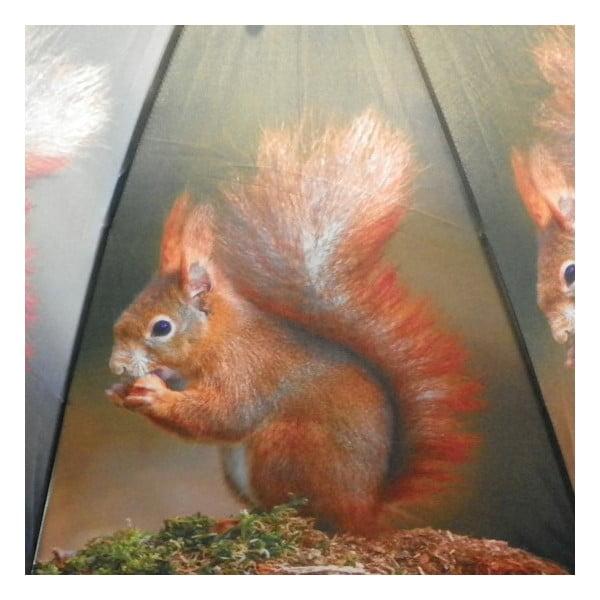 Deštník Nature Squirrel