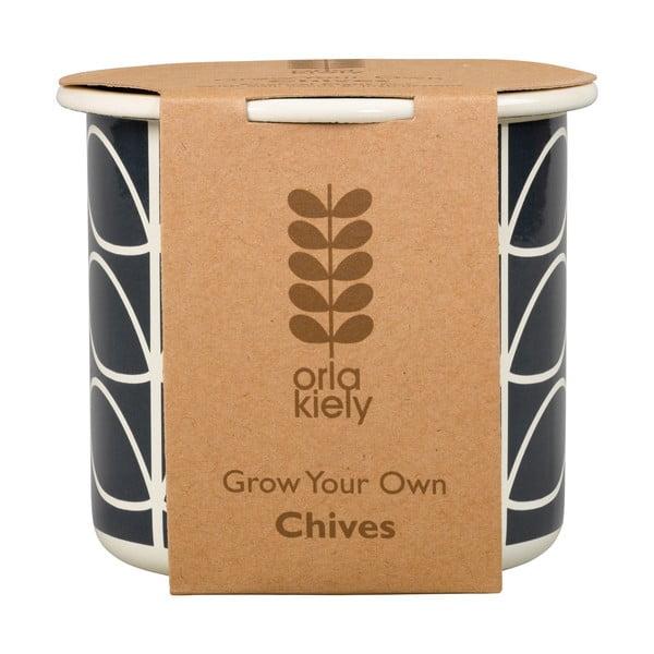 Květináč se semínky pažitky Orla Kiely Grow Your Own