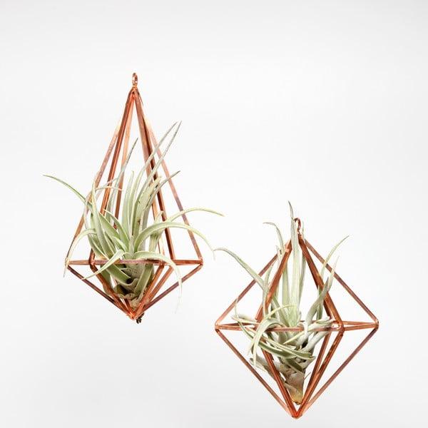 Sada 2 závěsných terárií s rostlinami Urban Botanist Prism, světlý rám