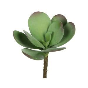 Umělá květina Ego Dekor Zelený sukulent s velkýmlistem