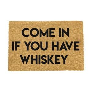 Rohožka Artsy Doormats If You Have Whiskey,40x60cm