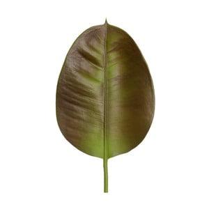 Frunză decorativă Ixia Laval
