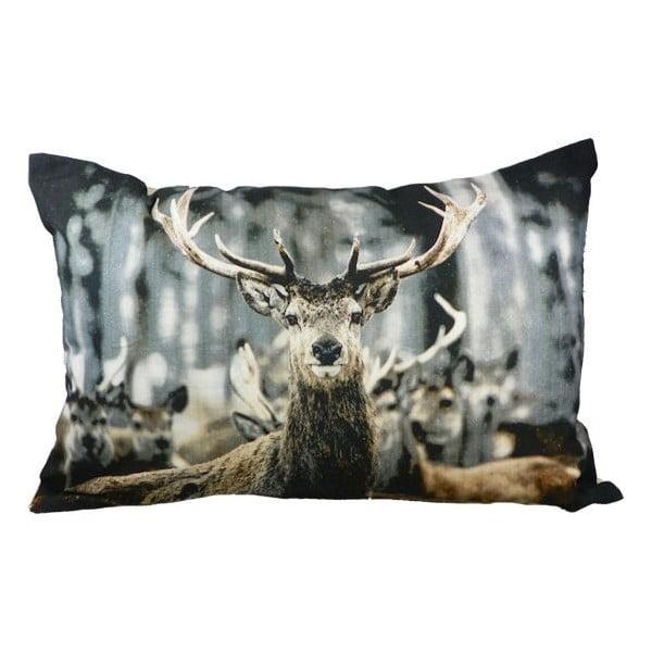 Polštář Winter Deer 60x40 cm