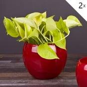 Sada 2 červench květináčů Arctic, 16 cm