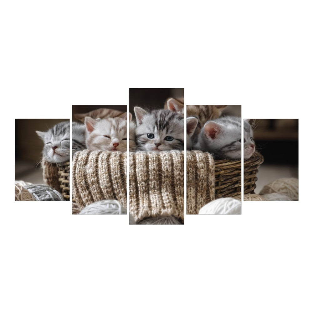 v ced ln obraz la maison des couleurs kittens bonami. Black Bedroom Furniture Sets. Home Design Ideas