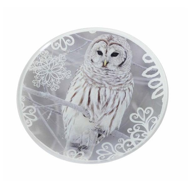 Talíř Owl