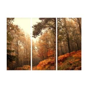 3dílný obraz Podzimní rokle