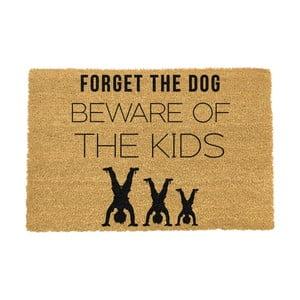 Rohožka Artsy Doormats Forget The Dog,40x60cm