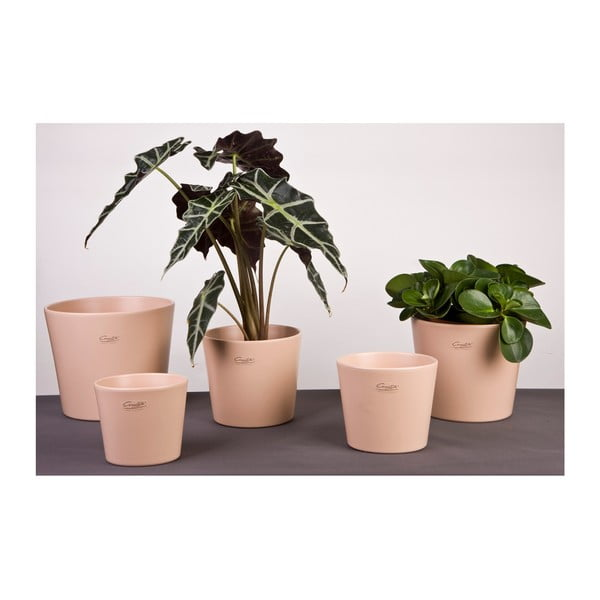 Sada 2 kávových květináčů Matt, 17 cm