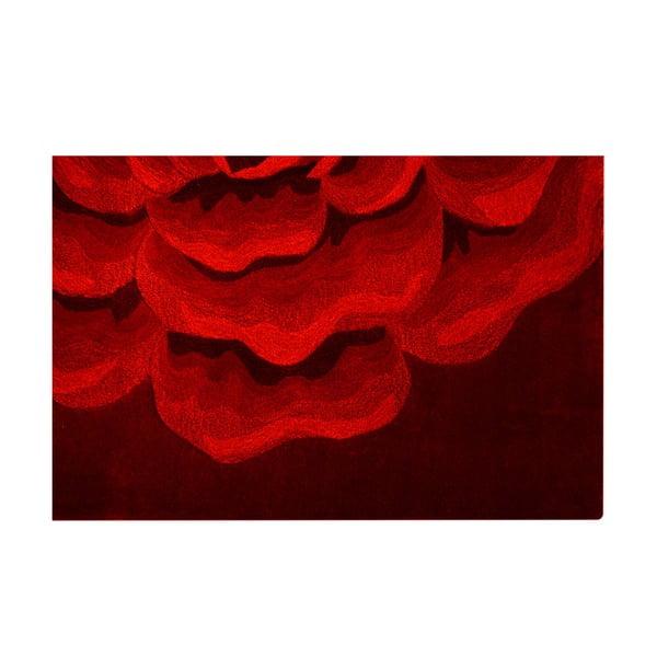 Koberec Sevilla 179, 170x240 cm