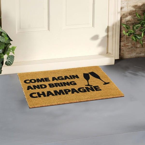 Rohožka Artsy Doormats Come Again & Bring Champagne,40x60cm
