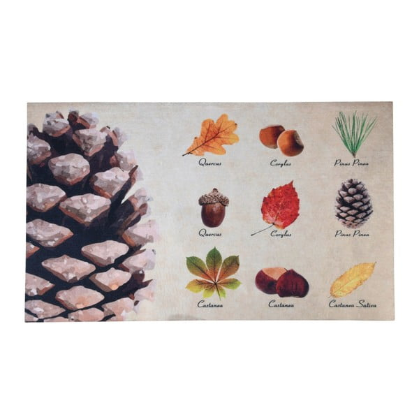 Rohožka s designem listů a plodů EsschertDesign, 45,4x75cm