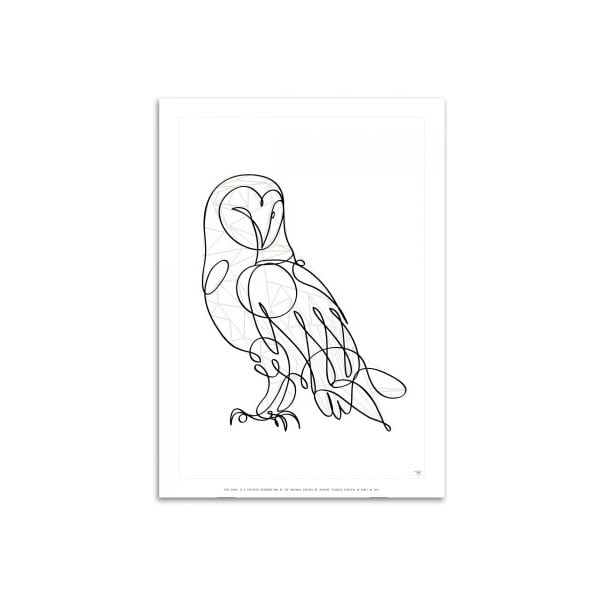 Plakát Barn Owl, ruční práce