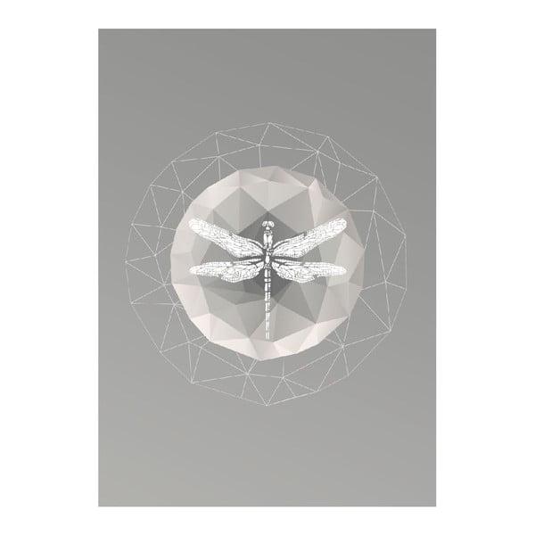 Plakát Dragonfly, A3